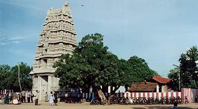 Kannaki Amman Kovil, Vattappalai, Sri Lanka